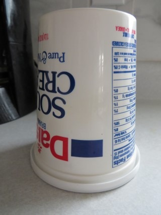 No More Runny Sour Cream 002 (Mobile)