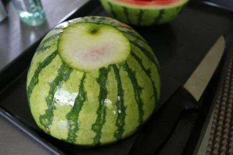 Watermelon Cooler Recipe 024 (Mobile)